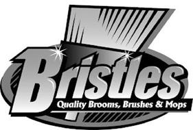 BRISTLES QUALITY BROOMS, BRUSHES & MOPS