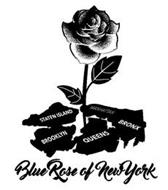 BLUE ROSE OF NEWYORK STATEN ISLAND BROOKLYN QUEENS BRONX MANHATTAN