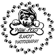 PAWFECT SHOT PHOTOGRAPHY