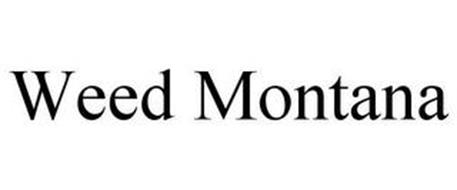 WEED MONTANA