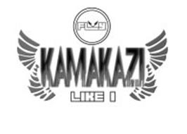 KAMAKAZI LIKE I FLY