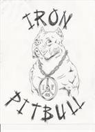 IRON PITBULL I P 45