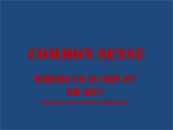COMMON SENSE WHERE CS IS NOT PC OR BS!! LOOK FOR US ON OUR FACE BOOK PAGE