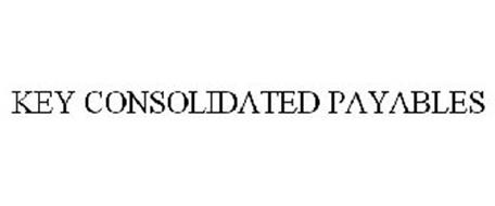 KEY CONSOLIDATED PAYABLES