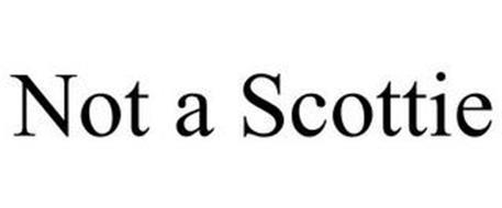 NOT A SCOTTIE