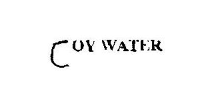 JOY WATER