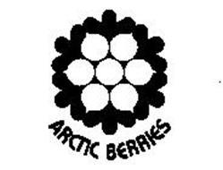 ARCTIC BERRIES