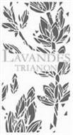 LAVANDES TRIANON
