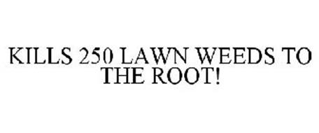 KILLS 250 LAWN WEEDS TO THE ROOT!