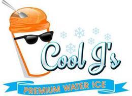 COOL J'S PREMIUM WATER ICE