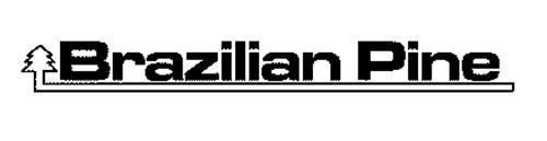 BRAZILIAN PINE