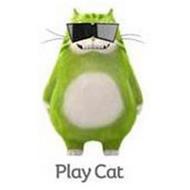 PLAY CAT