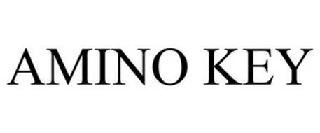 AMINO KEY