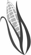 LIFELINE FOODS, LLC