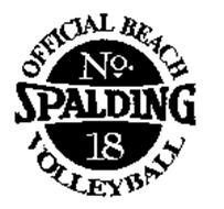 SPALDING - OFFICIAL BEACH VOLLEYBALL NO. 18