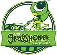 LITTLE GRASSHOPPER LAWN CARE, LLC