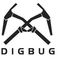 DIGBUG