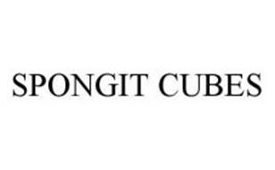 SPONGIT CUBES