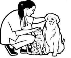 Lorient Pet Services, LLC