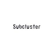 SUBCLUSTER