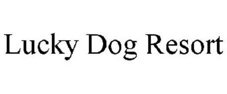 LUCKY DOG RESORT
