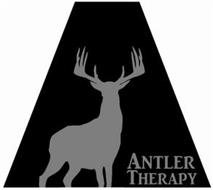 ANTLER THERAPY