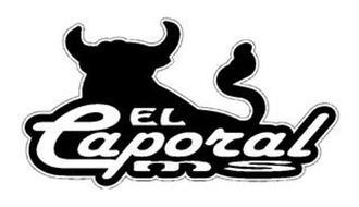 EL CAPORAL MS
