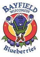 BAYFIELD WISCONSIN BLUEBERRIES