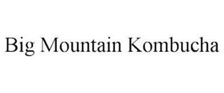BIG MOUNTAIN KOMBUCHA