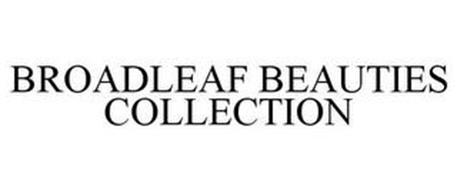BROADLEAF BEAUTIES COLLECTION