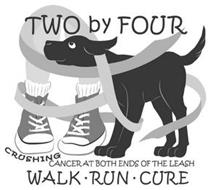 TWO BY FOUR CRUSHING CANCER AT BOTH ENDS OF THE LEASH WALK · RUN · CURE