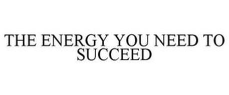 THE ENERGY YOU NEED TO SUCCEED