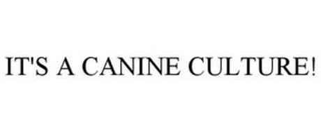 IT'S A CANINE CULTURE!