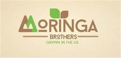 MORINGA BROTHERS GROWTH IN THE U.S.