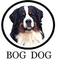 BOG DOG