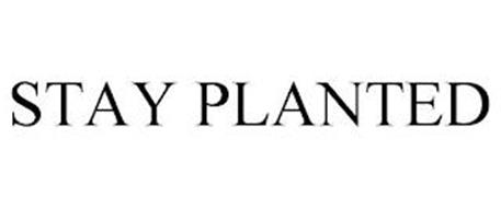 STAY PLANTED