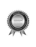 SPRINGBOARD CONSULTING, LLC DIVE IN WITH PRECISION DISABILITY COMMITMENT COMPETENCE CONFIDENCE