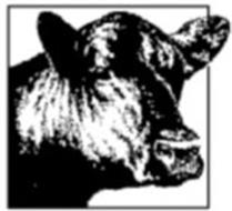 NATIONAL BEEF PACKING COMPANY, LLC