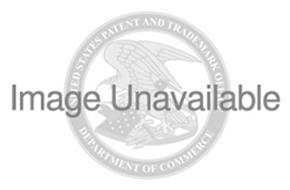 NATIONAL IDENTIFICATION DOCUMENT