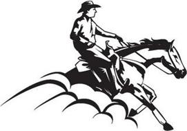 National Reining Horse Association