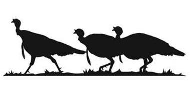 National Wild Turkey Federation, Inc.