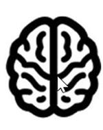 Neurocern, Inc.