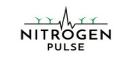 NITROGEN PULSE