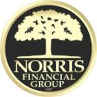 NORRIS FINANCIAL GROUP LLC