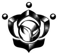 Nuviza LLC