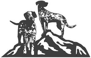Old Dogs, Happy Tails, Inc.
