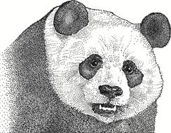 Panda Power Generation Infrastructure Fund, LLC