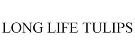 LONG LIFE TULIPS