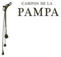 CAMPOS DE LA PAMPA