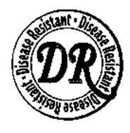 DR DISEASE RESISTANT
